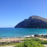ハワイからアシタノー大切なものは何?ー