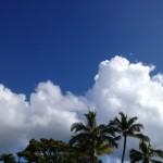 ハワイからアシタノ!ー自分で決めるー