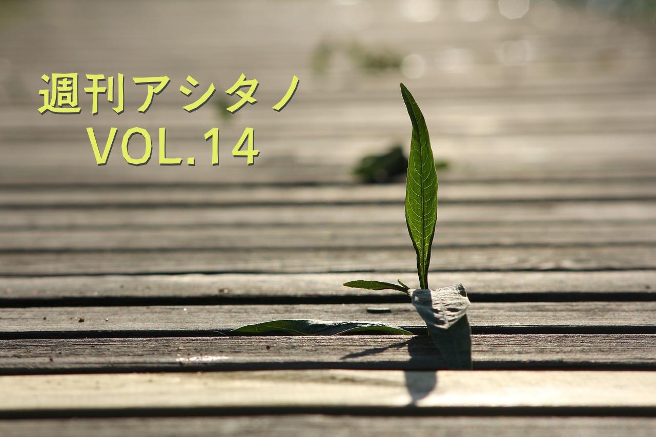 seedling-478316_1280