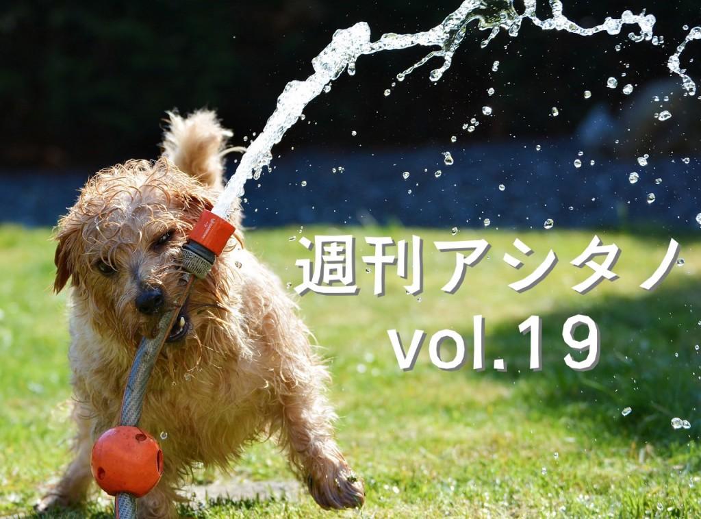 dog-1310545_1280
